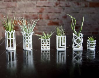 Individual Air Plant Living Chess Containers