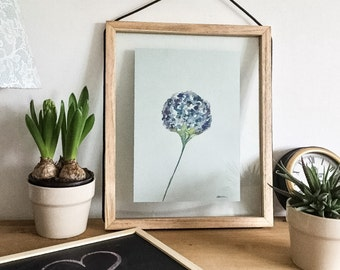 Hydrangea print - floral painting - watercolour print