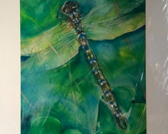 """Green Dragonfly Oil on Paper Painting in Mount 20x16"""""""