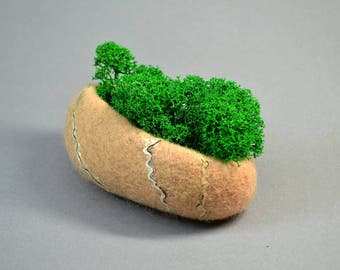 Felted pebble with preserved reindeer moss home and office decor