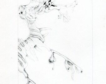 """Original pencil drawing """"Seahorse"""""""