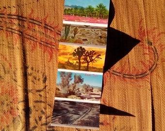 Vintage Collectible Arizona Postcard Booklet Beauties of the Desert