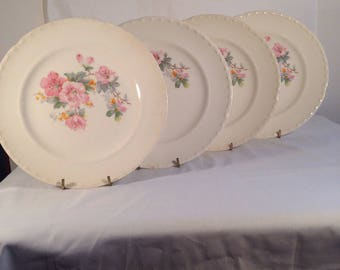 Set of 4 dinner plates from Crooksville China