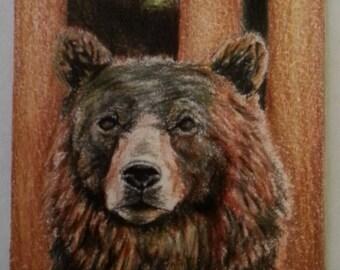 original ACEO brown bear pencil sketch 1/1