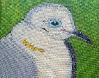 my mourning dove -6x6 inch square acrylic painting