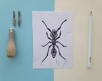 Linoleum print ant