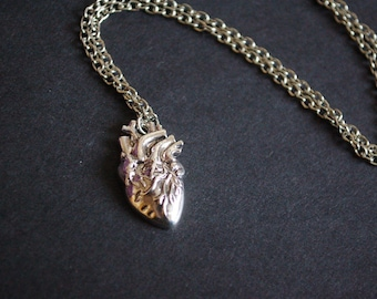 silver tone anatomical heart necklace