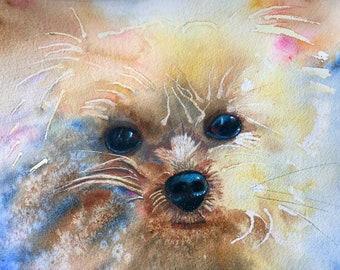 Yorkie Puppy Fine Art Reproduction