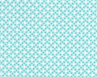 Michael Miller Fabrics Dim Dots CX6322-AQUA-D  -- 1/2 yard increments