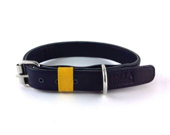 Genuine Leather Dog Collar - Navy & Yellow