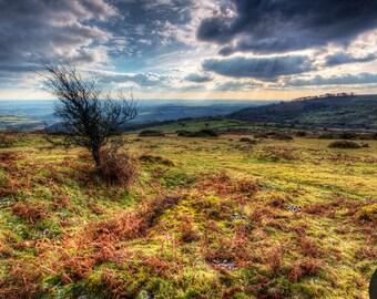 Fine Art or Canvas Print - Bagtor Down, Dartmoor