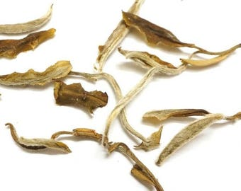 Aged Snowbud White Tea. All Natural Gourmet Loose Leaf White Tea.