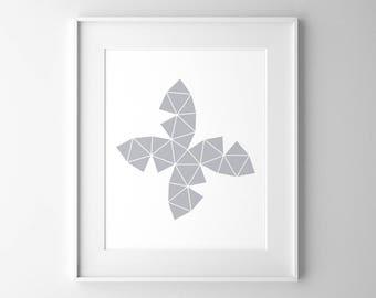 Unwrapped Geosphere, Geometric Art, Contemporary Art