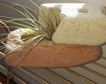 Air plant and vintage reclaimed beach brick. Planter.
