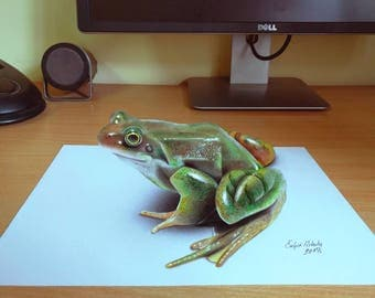 3D Frog drawing