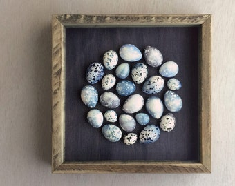 Blue speckled plaster egg framed wall art: handmade in Australia by Kuberstore