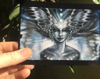 Blue fairy, Post Card by Renae Taylor