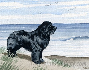 "Newfoundland Art Print ""NEWFOUNDLAND At The BEACH"" Signed by Artist D J Rogers"