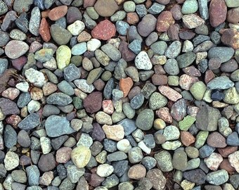 Rocks on ground Original Color Photograph Home Decor Gift
