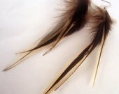 Natural Feather Earrings badger real feathers