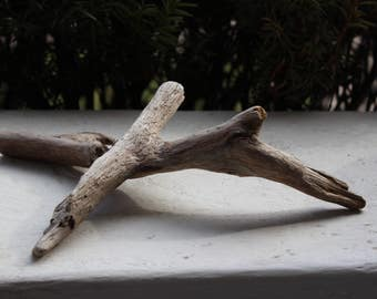One of a Kind Driftwood Sculpture ,  unique drift wood for Display ,aquarium and craft supplies