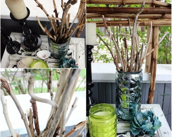 Green Living Home Decor , 16 Natural Driftwood Branches for Beach Room Decoration , Vase Filler EF16