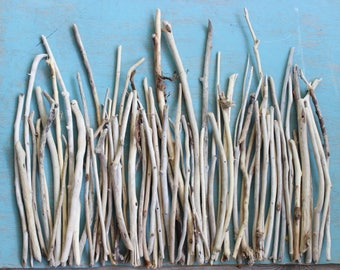 Large Collection of 66 Driftwood Sticks/ Branches Collection to Create Beach Centerpieces and Wedding Decoration , Coastal Home DB66