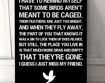 Shawshank Redemption Movie quote inspired sign A4 metal plaque decor