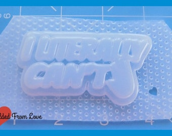 SALE I Literally Cant  Layered Word  Plastic Resin Mold