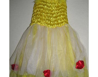 Belle beauty and the beast Inspired Costume Birthday girl toddler princess dress size 2 4 6 pretend play