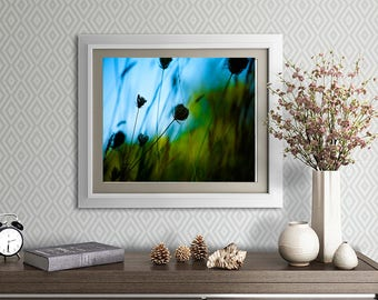 Nature Photography - plants growing along a pond - blue and green light-filled wall art for home or office