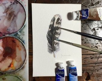 Woodpecker feather - Original watercolour study