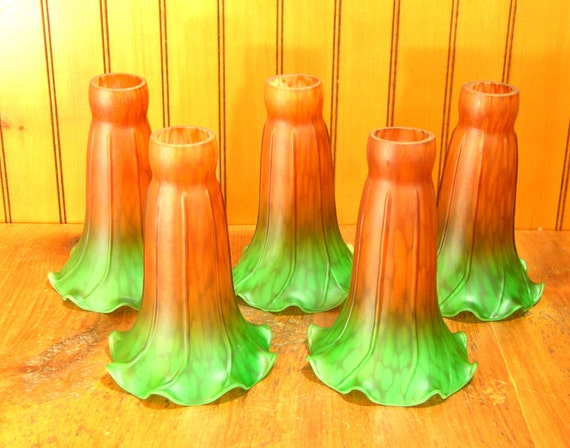 Lily Lamp Shades Replacement Shades Set Of Five Amber