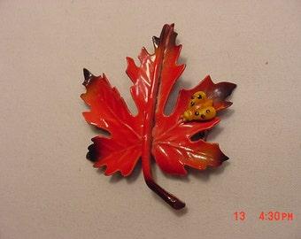 Vintage Red Maple Leaf With Bug Brooch  17 - 149
