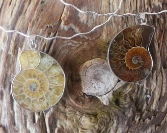 Ammonite Necklace/Pendant