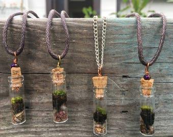 Tiny living moss terrarium necklace