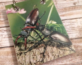 Recycled  Notebook - Handmade Journal - Upcycled Vintage Book - Large Notepad - Refillable Notepad - Bugs, Insects - Animal  Notebook -