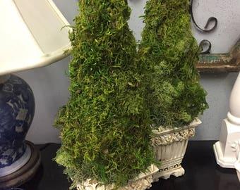 Moss Topiaries, Spring Decor, Moss Natural Topiary, Rustic Topiary