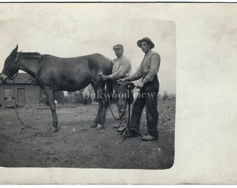 Horse Grooming Real Photo Antique Postcard c1910, Men, Mechanical Tool Equipment, Victorian RPPC Ephemera, FREE SHIPPING
