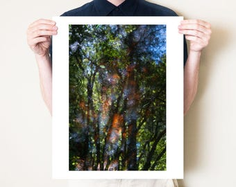Forest photography, trees, water reflection artwork. Green spring fine art photograph. Ethereal woodland home decor, small or large print
