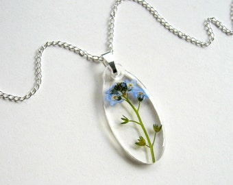 Forget Me Not - Real Flower Garden Necklace - botanic jewelry, pressed flower, myosotis, Victoria Blue, flower necklace, modern, ooak, gift