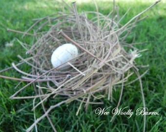 Nature Made Springtime Decor - Bird Nest