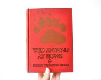 Wild Animals at Home - Ernest Thompson Seton - Vintage Children's Book