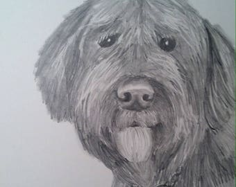 drawing of dog from photo pet cat sale