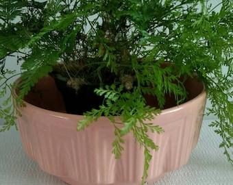 Peach Pink Haeger Planter
