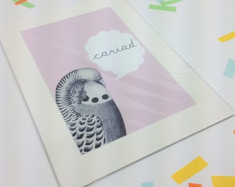 Welsh Text Cariad Llove Budgie Pale Pink Digital Art Print A4  Mounted