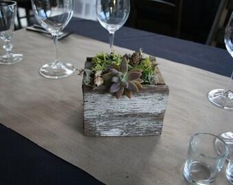 Rustic Reclaimed Wood Succulents Planter - BP02