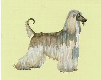 Afghan lure coursing   Etsy Afghan Hound Lure Coursing