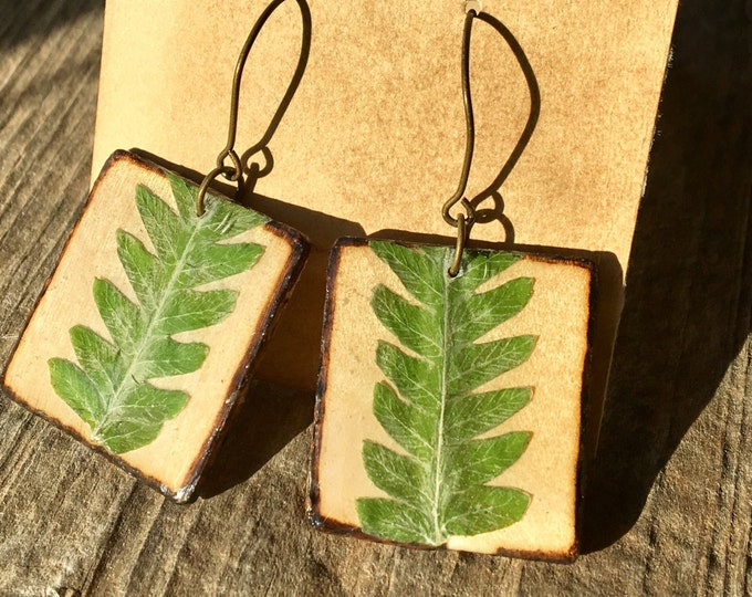 Real Fern Frond Earrings on Wood Slats Small Square