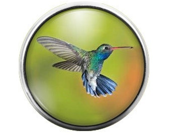 Hummingbird- 18MM Glass Dome Candy Snap Charm GD0071